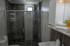 Main bathroom with shower and toilet